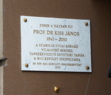 Kiis János emléktáblája