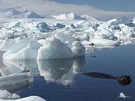 Globális felmelegedés - sarki jégtömeg